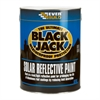 Everbuild 907 Solar Reflective Paint 25L